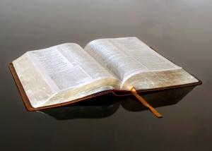bible-reflective