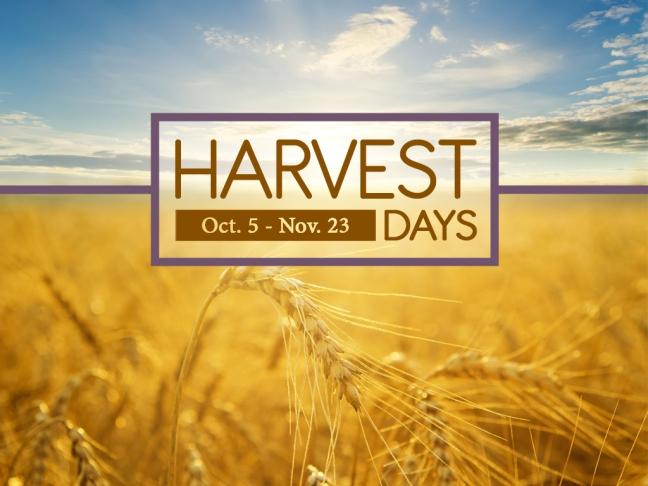harvest-bkg