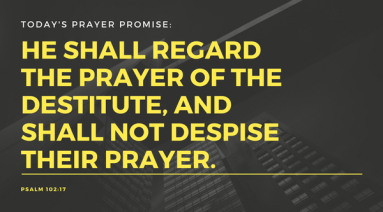 He shall regard the prayer of the destitute, And shall not despise their prayer.