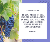 If you abide in Me, and My words abide in you, you will ask what you desire, and it shall be done for you.